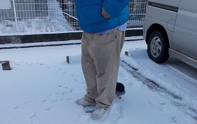 雪とさくら