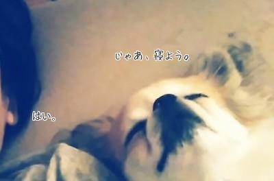 添い寝中のハヤテ6
