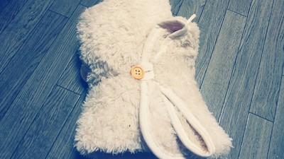 羊の毛布2