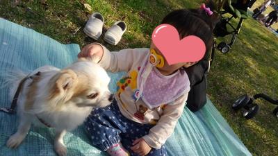 さくらと赤ちゃん5