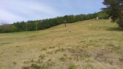 山での多分私とハヤテ