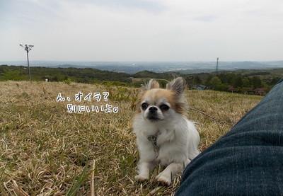 山でのハヤテ