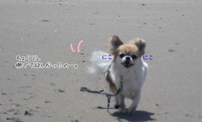 笑顔のハヤテ