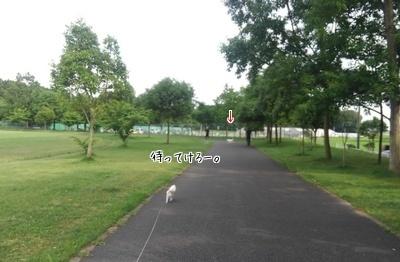 ストーカー散歩2