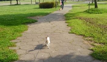 ストーカー散歩6
