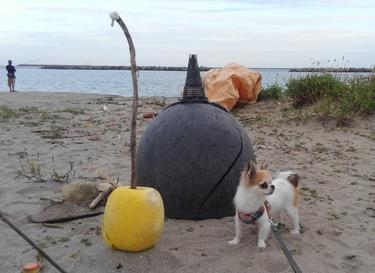 海のオブジェとハヤテ