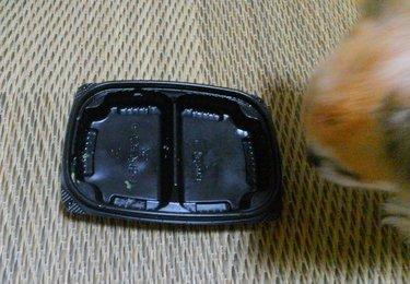 お弁当とハヤテ5