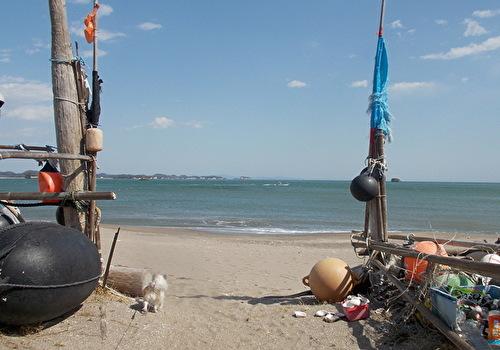 海に向かうハヤテ