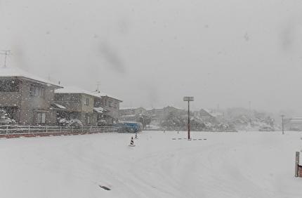 吹雪いた景色