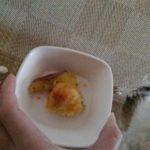 焼き芋とチワワーズ