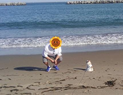 海とさくらと旦那さん4