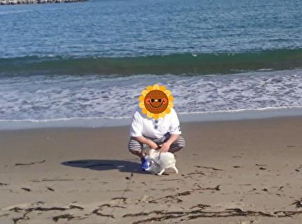 海とさくらと旦那さん5