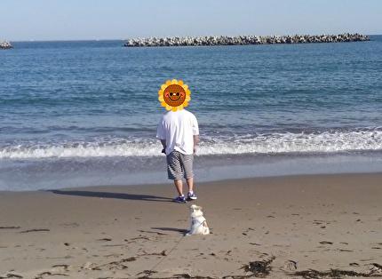 海とさくらと旦那さん